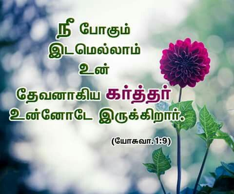 Bible Words Quotes Verses Tamil Promises Wallpapers Friendship Beautiful Prayer