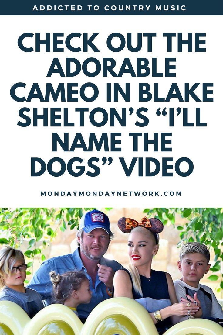 I Ll Name The Dogs Blake Shelton Pictures