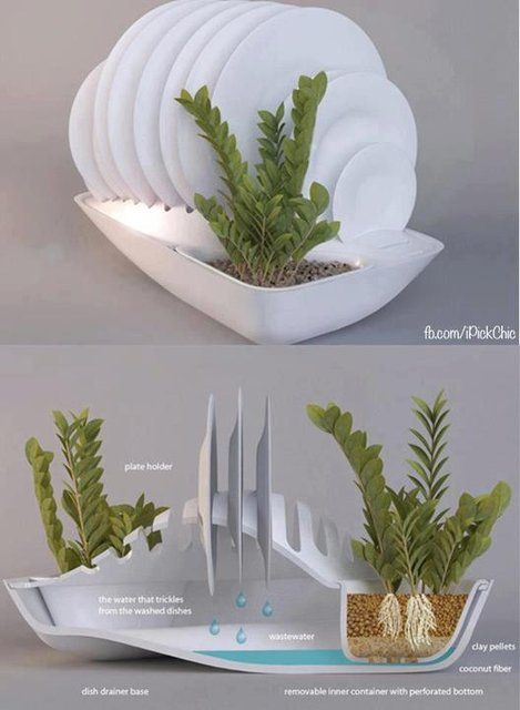 water from your dishes goes to the plants