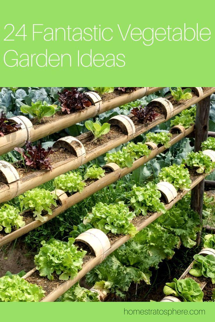 24 Fantastic Backyard Vegetable Garden Ideas Vegetables Vegetable Garden Backyard Vegetable Gardens