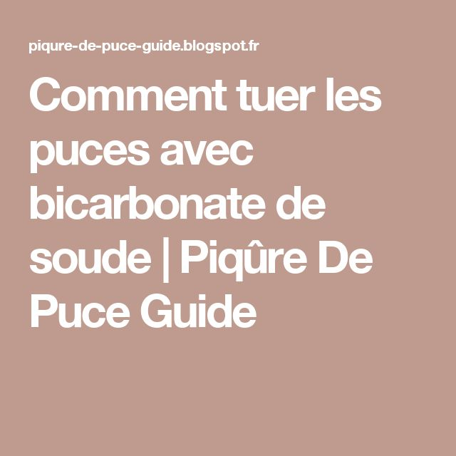 comment tuer les puces avec bicarbonate de soude piq re de puce guide astuces pinterest. Black Bedroom Furniture Sets. Home Design Ideas