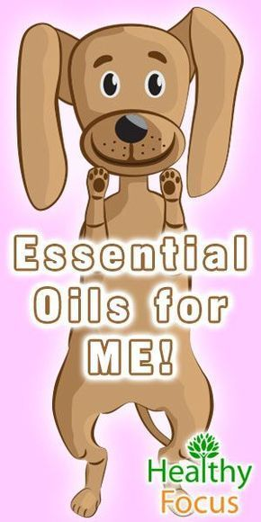 What are the best Essential Oils for Dogs? We cover oil safety and the oils good for fleas, anxiety, ear infections, skin conditions and other conditions. #DogHealth