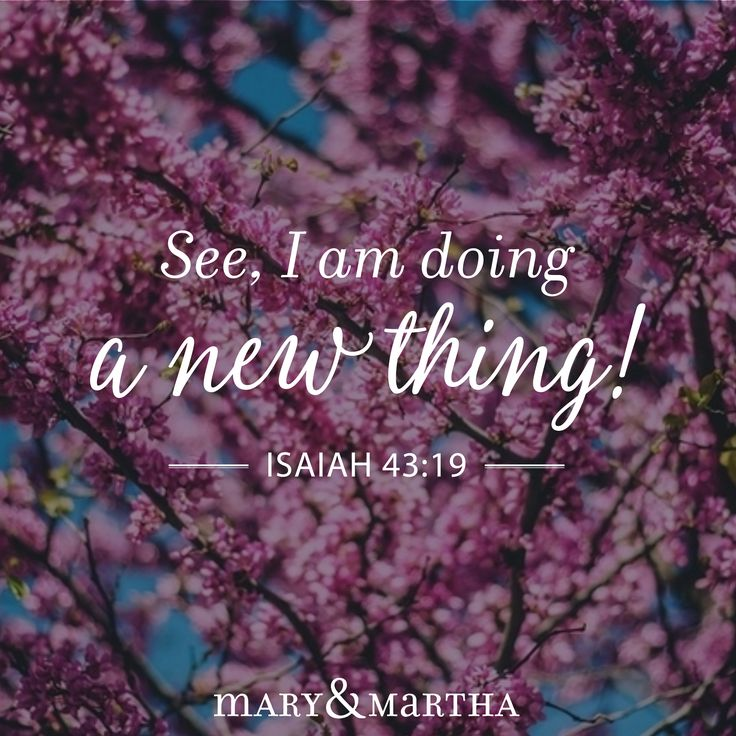 See, I am doing a new thing! Now it springs up; do you not perceive it? I am making a way in the wilderness and streams in the wasteland. - Isaiah 43:19
