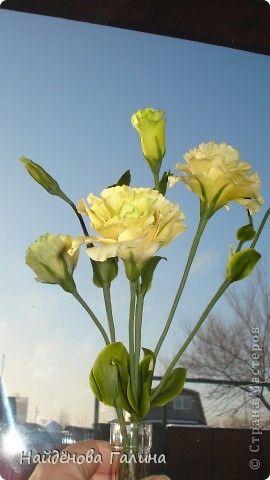 Мастер-класс Флористика искусственная Лепка Как я делаю стебель цветка Фарфор холодный фото 1