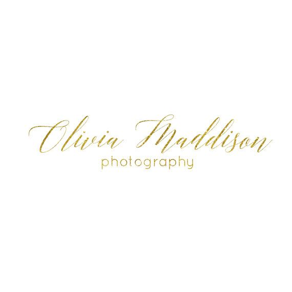 Gold Logo Premade Gold Logo Photography watermark by Designsbyritz