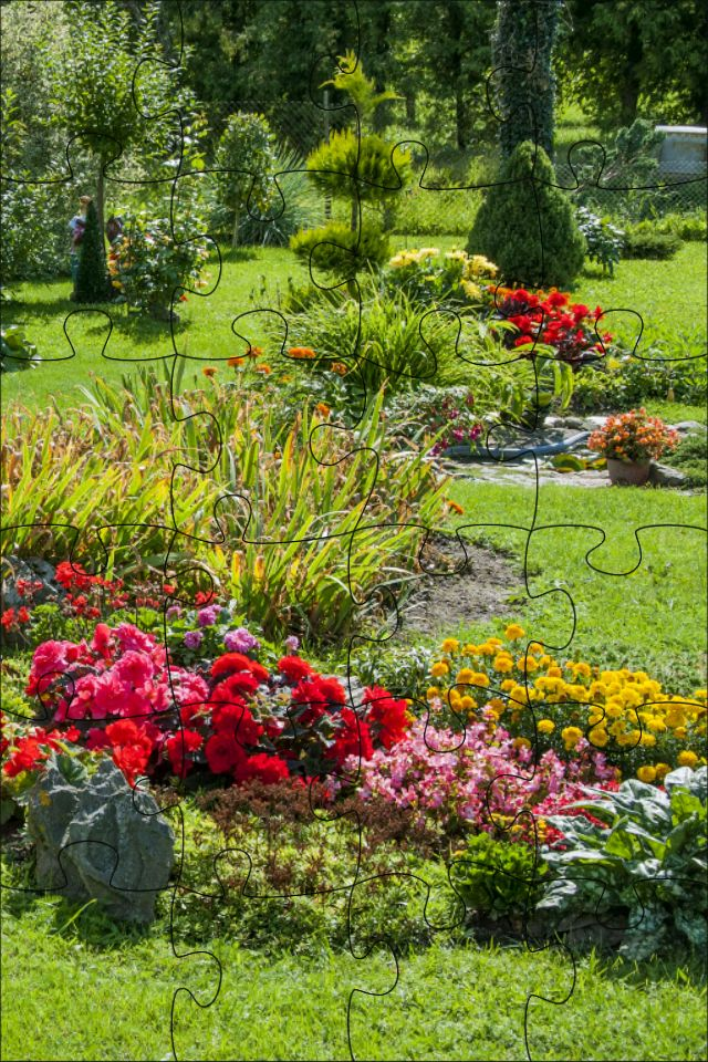 28 Best Garden Bed West Backyard Images On Pinterest