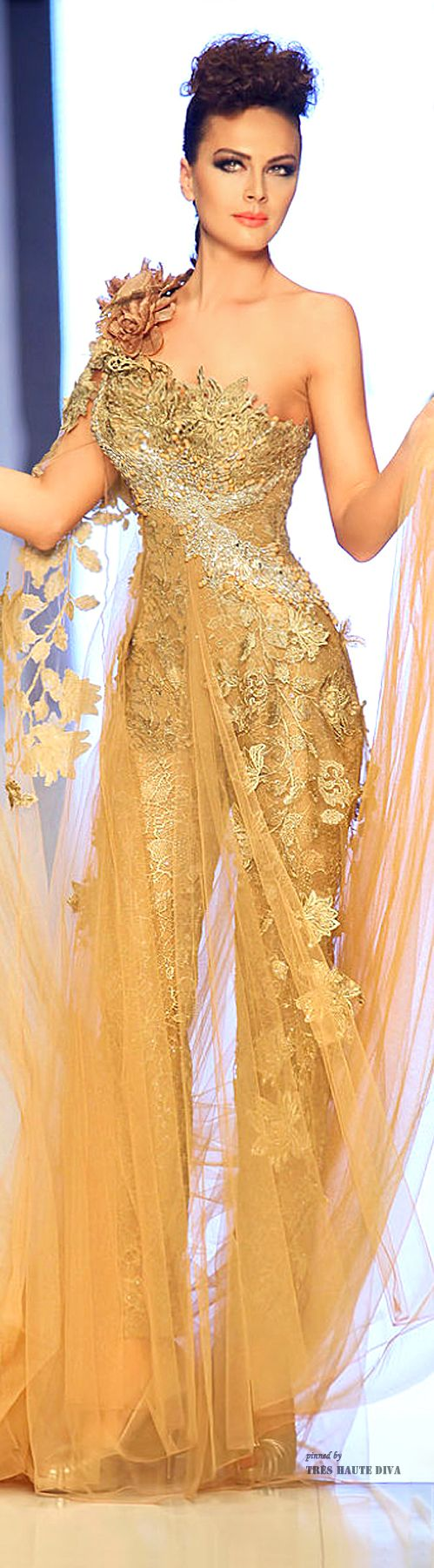 Fouad Sarkis ~ Couture Spring One Shoulder Embroidered Lace Embellished Gown, Gold 2014