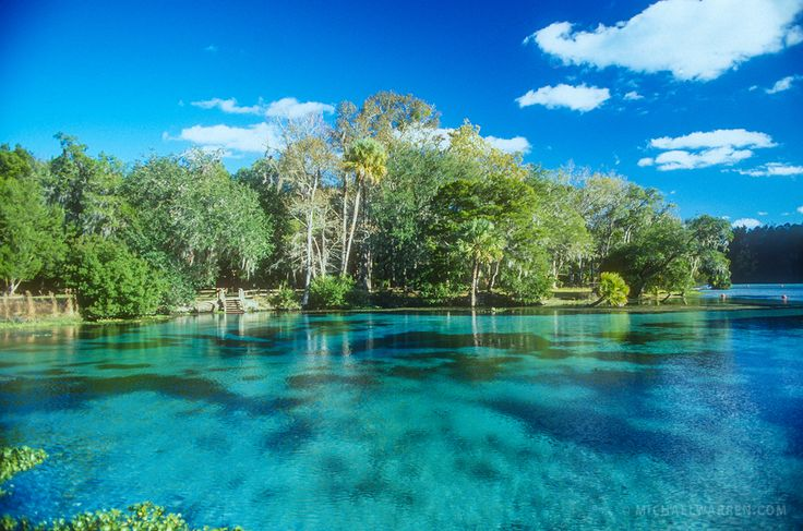 Silver Glen Springs in the Ocala National Forest
