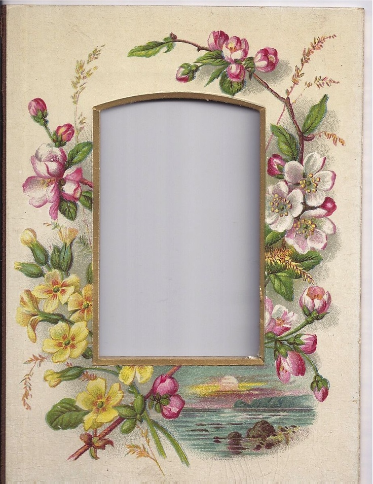 Lovely Chromolithograph Floral Page From Victorian Photo Album, CDV