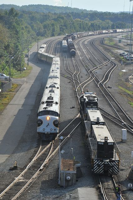 Norfolk Southern, Heritage Engines In Train Yard