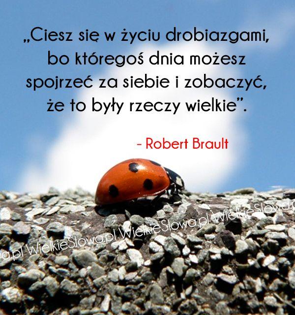 Ciesz się w życiu drobiazgami, bo któregoś dnia... #Brault-Robert,  #Radość, #Życie