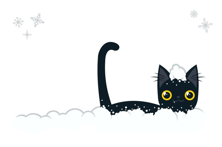 funny black cat in winter snow with snowflakes