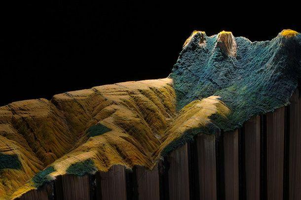 Adembenemend landschap van 24 encyclopedieën door   kunstenaar Guy Laramee