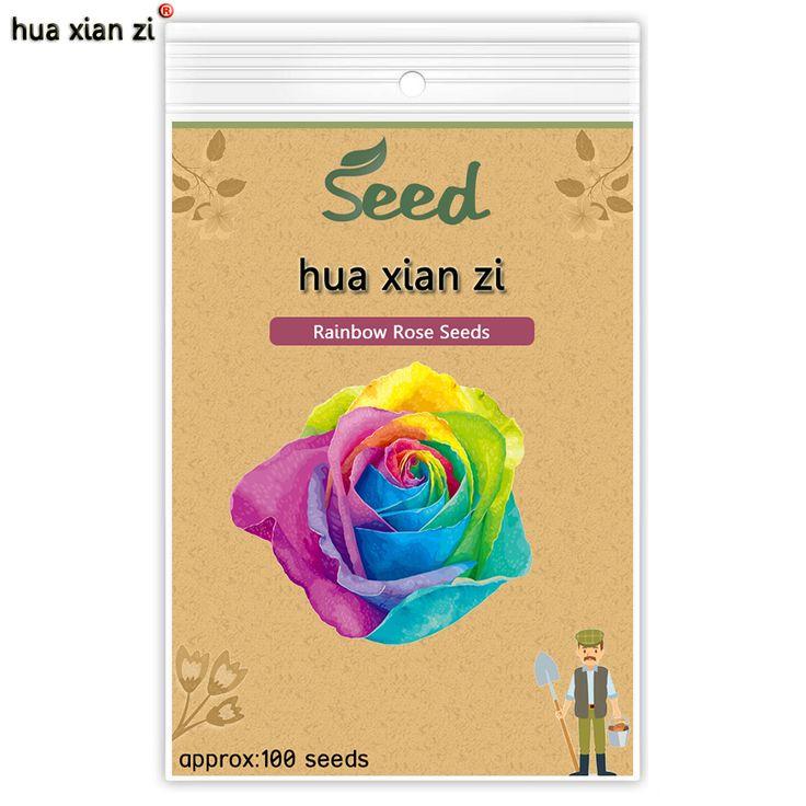 HUA XIAN ZI Gül Tohumları Nadir Gökkuşağı Gül Tohum Çok Yıllık Bonsai çiçek Balkon Bitkiler Ev Bahçe Bitki kolay için 100 tohumlar/çanta