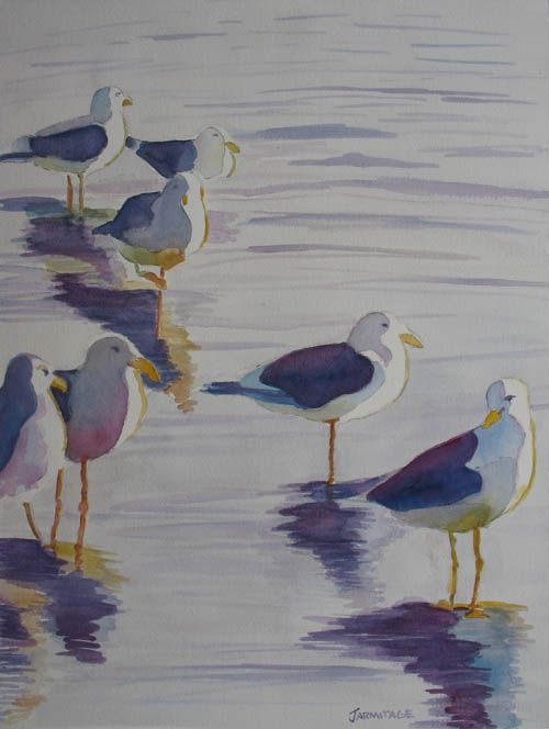 """Assorted Gulls"" by Jenny Armitage"