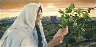 La fe en Dios hace milagros
