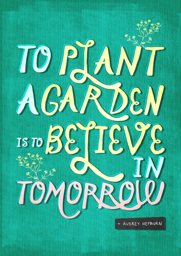 To Plant A Garden Is To Believe In Tomorrow By Zoe James Ingram Quotes Pinterest Plants