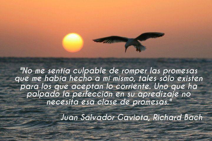 Juan Salvador Gaviota, Richard Bach.