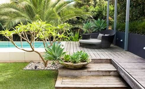 Image result for poolside garden australia