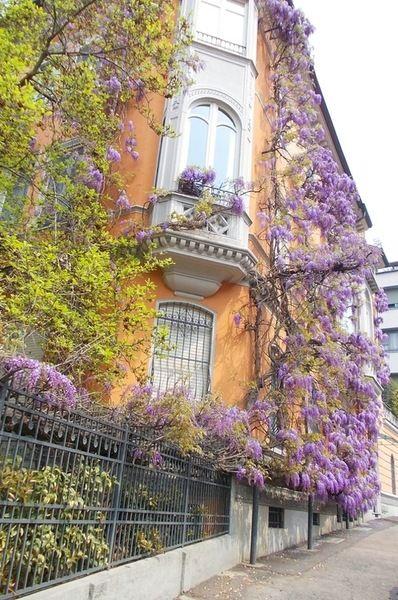 Turin, Italy Piemonte