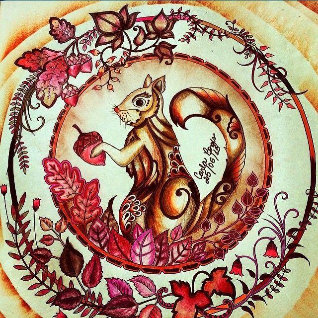 Enchanted Forest Johanna Basford Squirrel