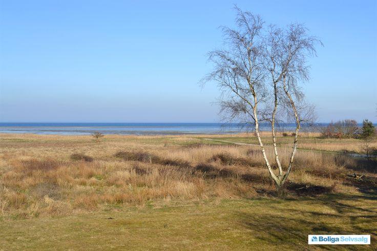 Mågevej 23A og 23 B, St Sjørup, 8950 Ørsted - Fantastisk grund i første række...Fuld panorama #fritidsgrund #grund #grundsalg #ørsted #selvsalg #boligsalg #boligdk