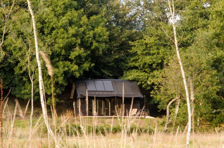 'Out of the Valley', Devon- Rupert Mckelvie, Devon hardwoods, Souther Timber