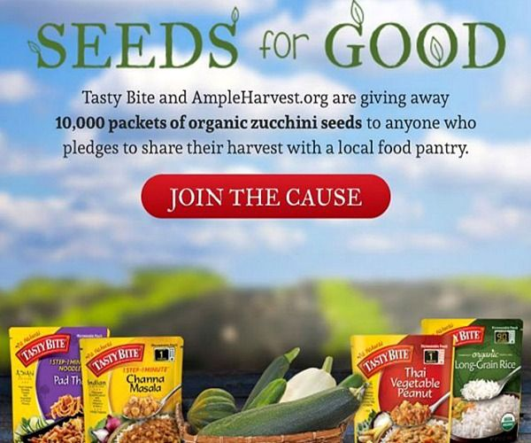 Get free zucchini seeds when you pledge to share your harvest with your local food bank