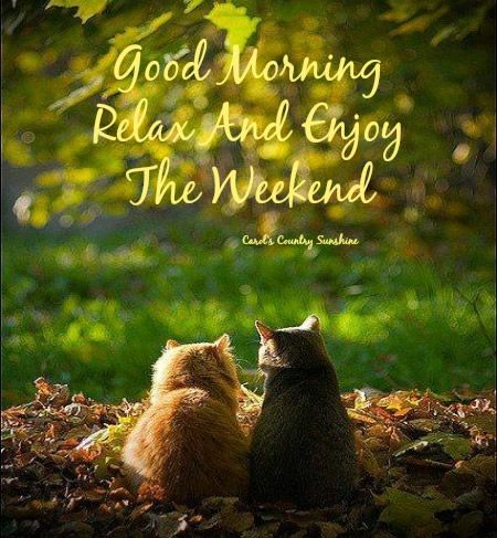 Good Morning. Relax and enjoy the weekend