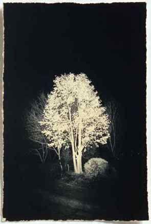 yamamoto (night scene)