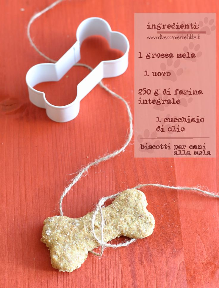 ingredienti biscotti per cani