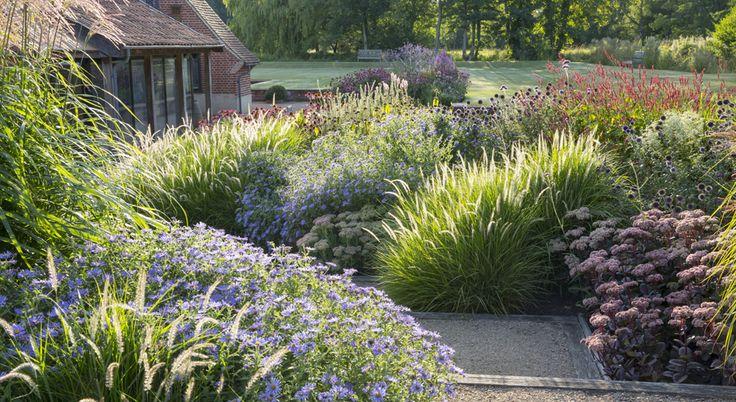 incredible dooryard garden designed by Sue Townsend