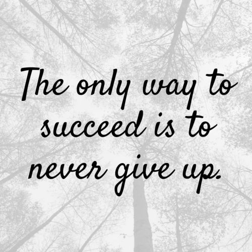 The only way to succeed is to never give up