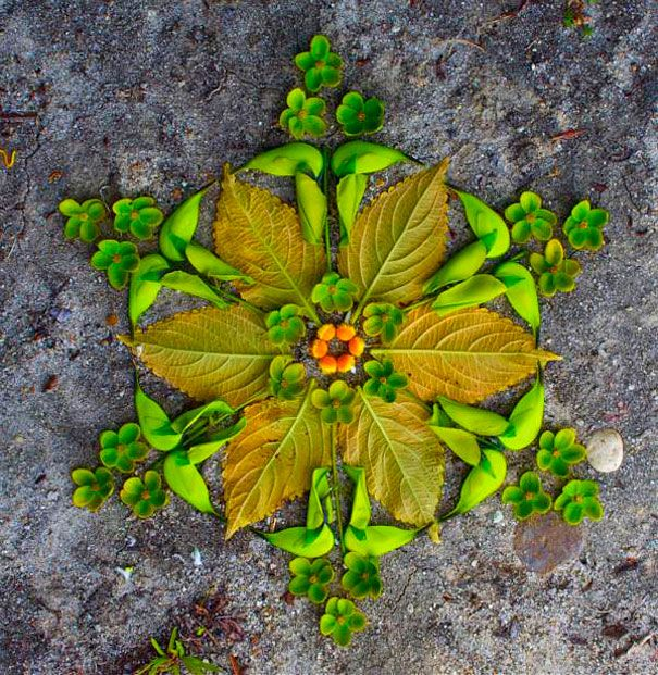 Rangoli using leaves