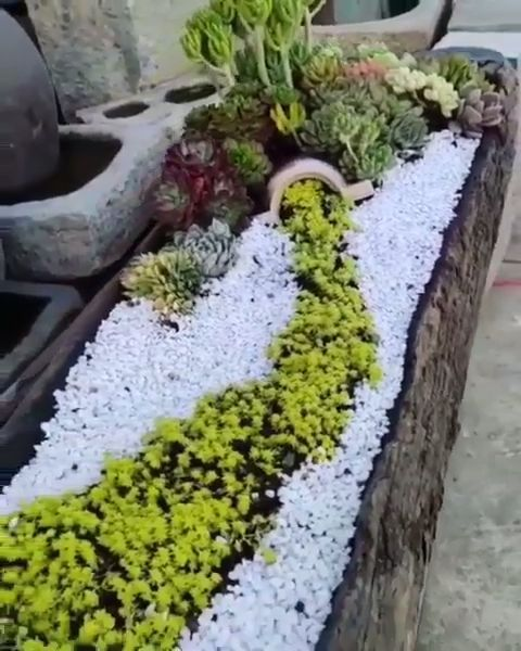 groß Exquisite Succulent Planter… WOW