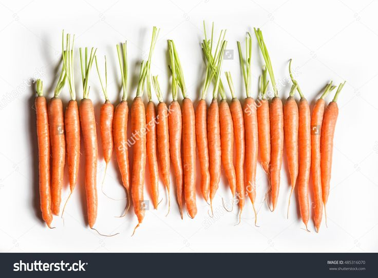 Fresh Carrots Of Different Sizes And Shapes In Row Isolated On White Background Top View. Banner And Copy Space For Text. Web-Design Studio Shot. Concept Of Healthy Lifestyle And Differences. Stock Photo 485316070 : Shutterstock