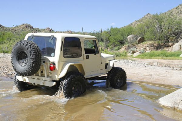 1988 Jeep Yj Wrangler With More Than Meets The Eye Jungle Fender
