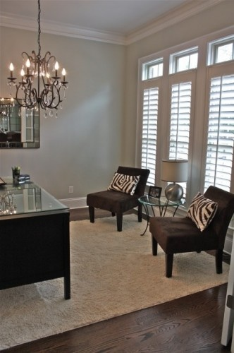 Love the idea of this home office.  The pillows are zebra, and over all the look is clean and not over done.