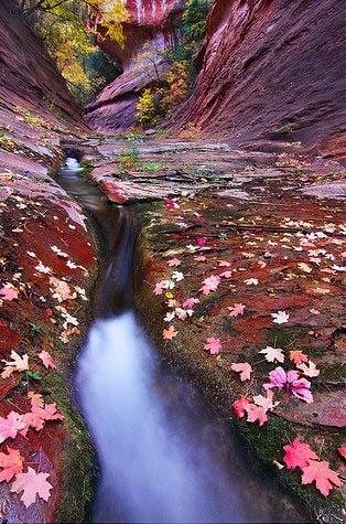 oak creek canyon #arizona