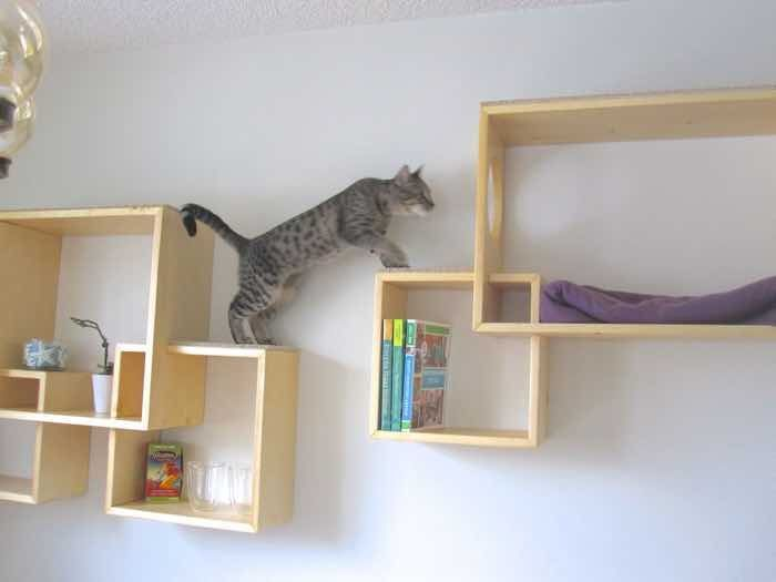 How To Create An Indoor Cat Climbing Wall Styletails Cat Wall Shelves Cat House Diy Cat Climbing Wall