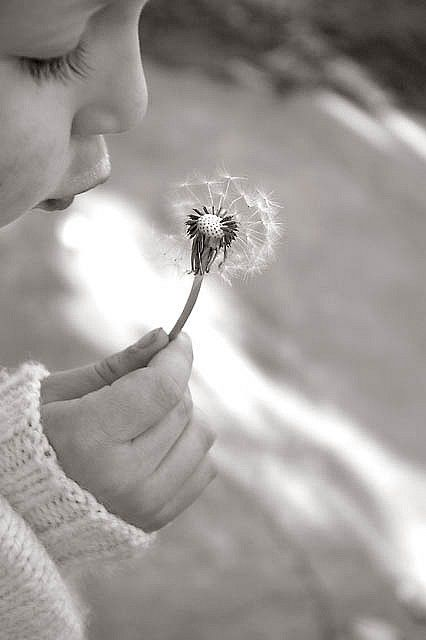 """fairy wish"" /gracia/ fraile fraile fraile fraile Gomez-Cortazar 