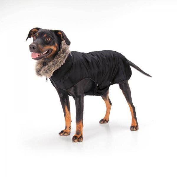 Tip van vandaag! dekentje voor je #hond van #eskadron , met bontkraag. Hoe hip is dat! https://www.hetgareel.nl/overige/hondenaccessoires/eskadron-hondendeken-nylon.html #hetgareel #onlineshopping #tip