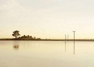 """minutiae"" by Nathan Abels: Elger Esser                                                                                                                                                                                 More"