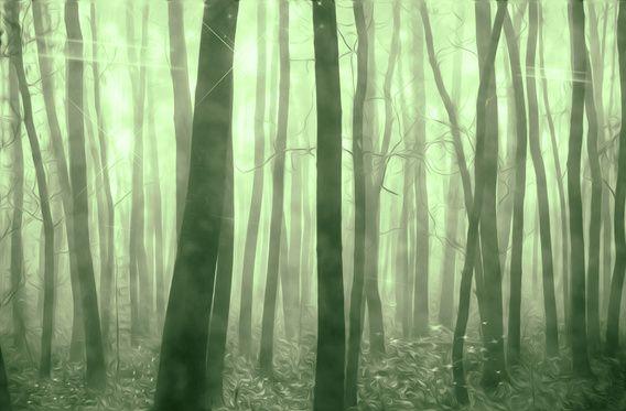 Nieuw in mijn Werk aan de Muur shop: Magisch bos