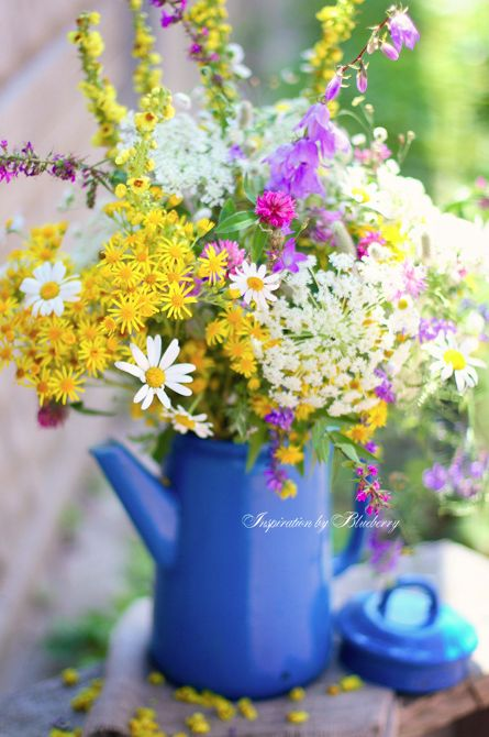 Wildflower bouquet- about the right colours if not the right flowers