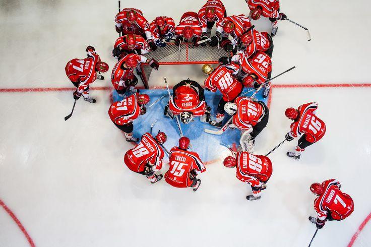 Omnitex // Our Works // Munkáink  Hockey Jerseys // Hockey // Sport Jersey  DAB Dunaújvárosi Acélbikák  www.omnitex.hu