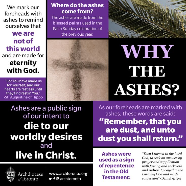 """""""Remember, that you are dust and unto dust, you shall return."""" Why the ashes?…"""