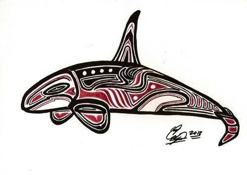 native alaskan orca art | orca killer whale northwest coast salish art native american