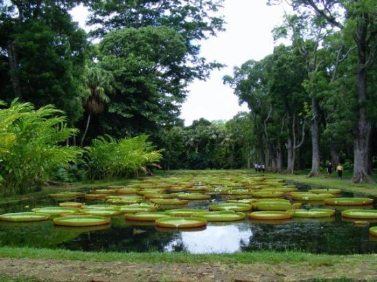 Free State National Botanical Garden of Bloemfontein