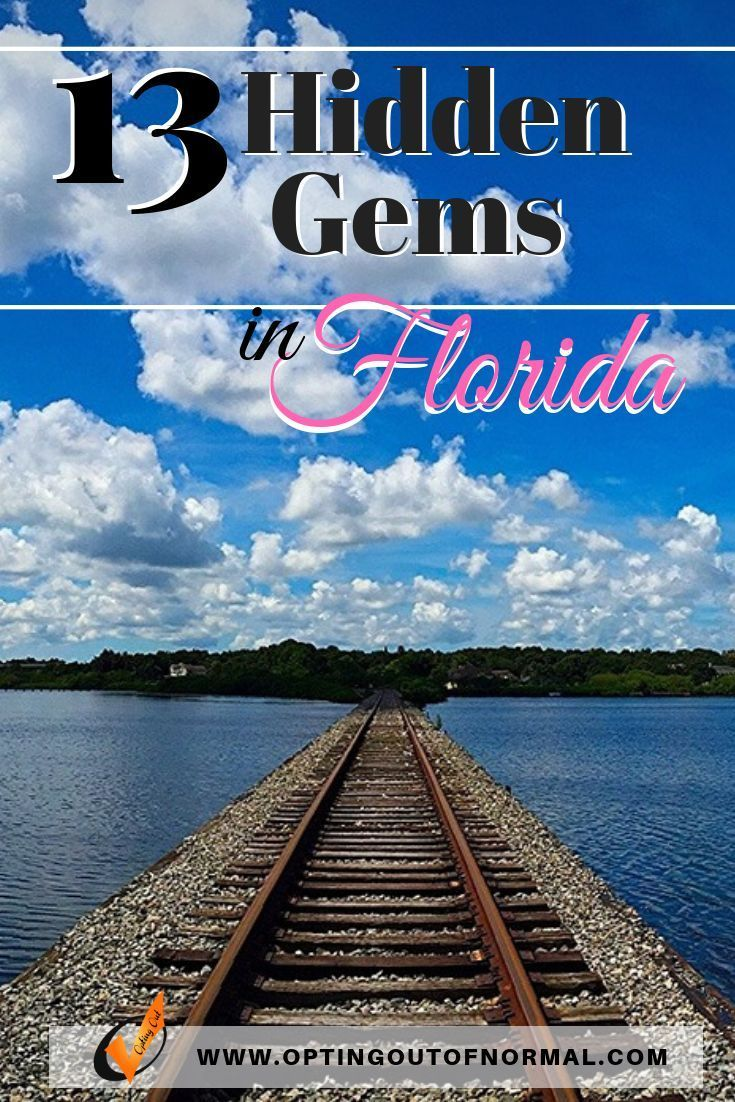 Off The Beaten Path In Florida Our Top Hidden Gems Opting Out Of Normal Florida Travel Florida Adventures Florida Vacation